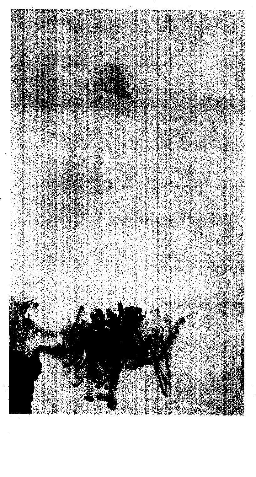 04548.014.002- pag.1
